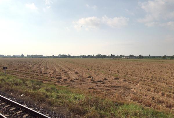 田畑が広がる