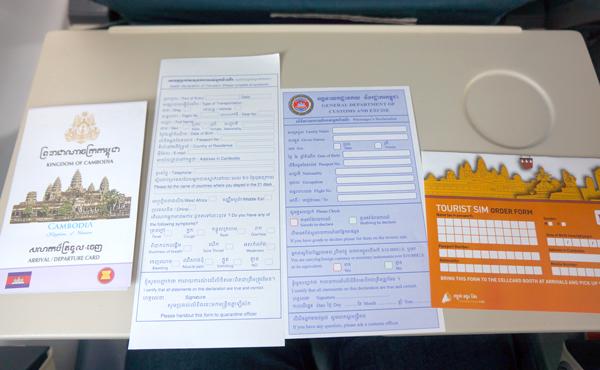 到着ビザ申請用紙、出入国カードなど