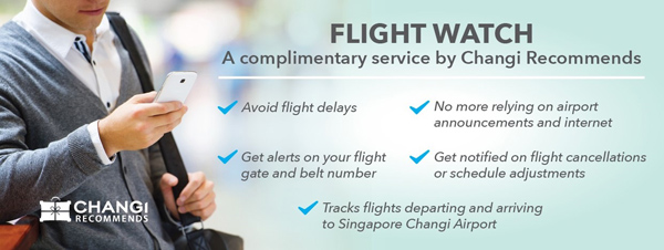 チャンギ国際空港 Flight Watch