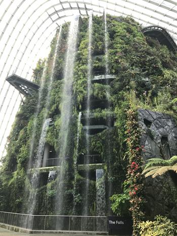 クラウドフォレストのThe Falls