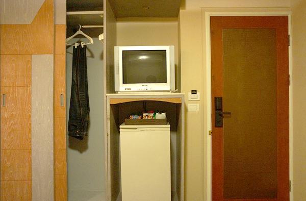 テレビ、冷蔵庫、クローゼットなど