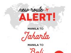 フィリピン・エアアジア マニラ~ジャカルタ線及びマニラ~バリ島線