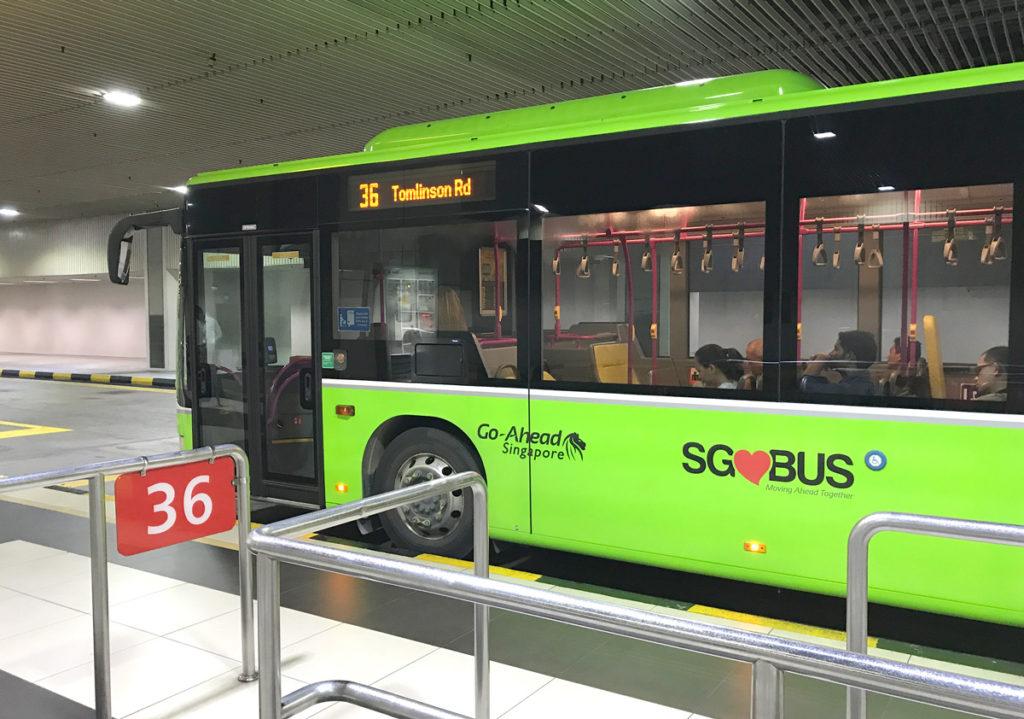 36番のバス