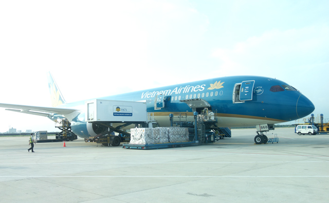 駐機中のベトナム航空機