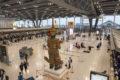 ANA、スワンナプーム空港のチェックインカウンターを変更 7月1日より