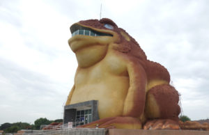 giant toad in Yasothon